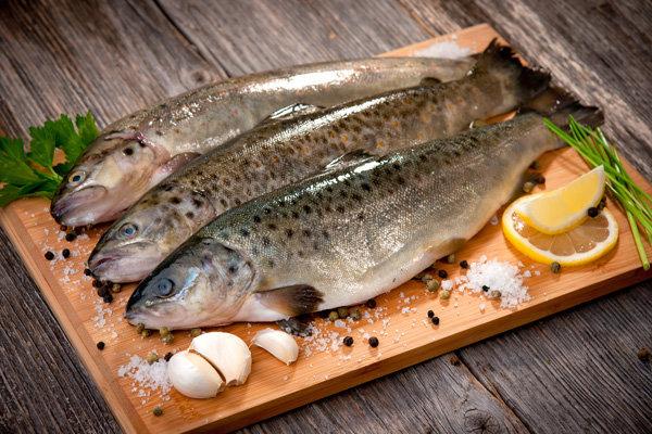 ماهی ساردین دارای ویتامین دی